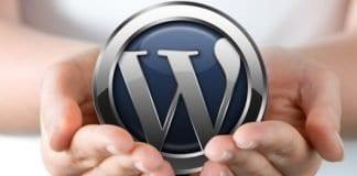 Lakukan Hal ini Sebelum Menentukan Themes dan Plugin untuk WordPress