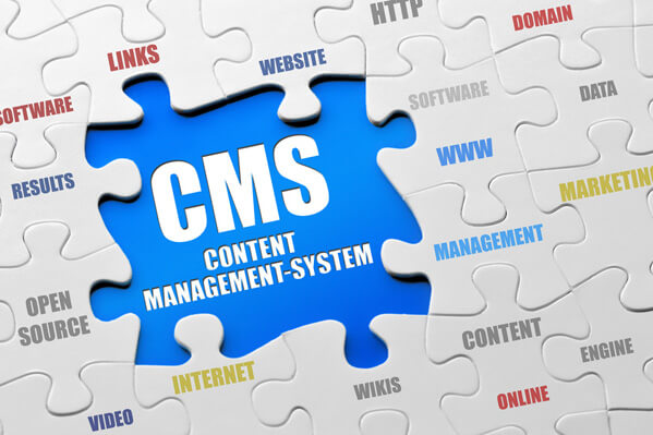 Content Management System (CMS) - Dewaweb - VPS Murah - Cloud Hosting Indonesia