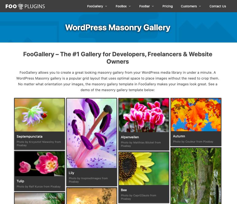 foogallery wordpress plugin masonry layout