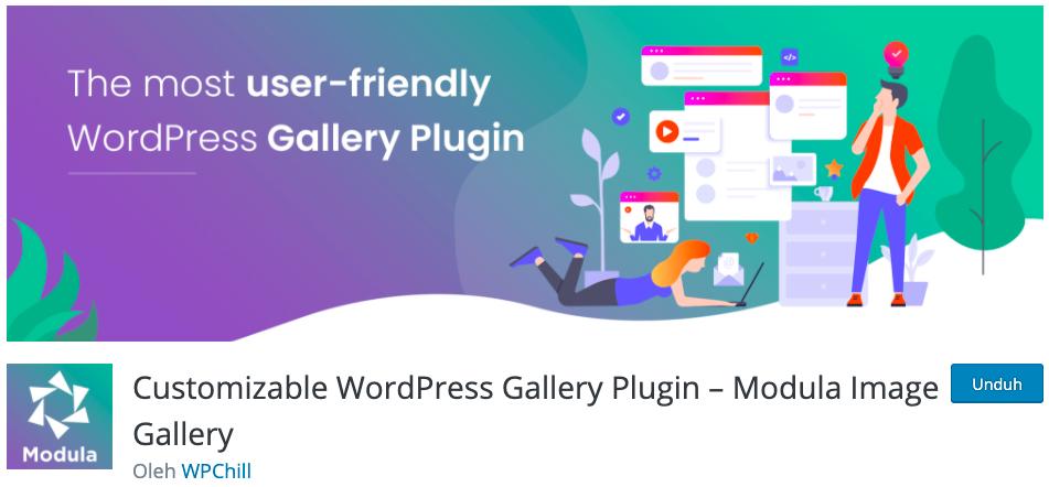 modula plugin wpchill