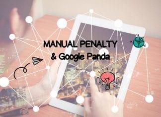 Google Panda - Manual Penalty