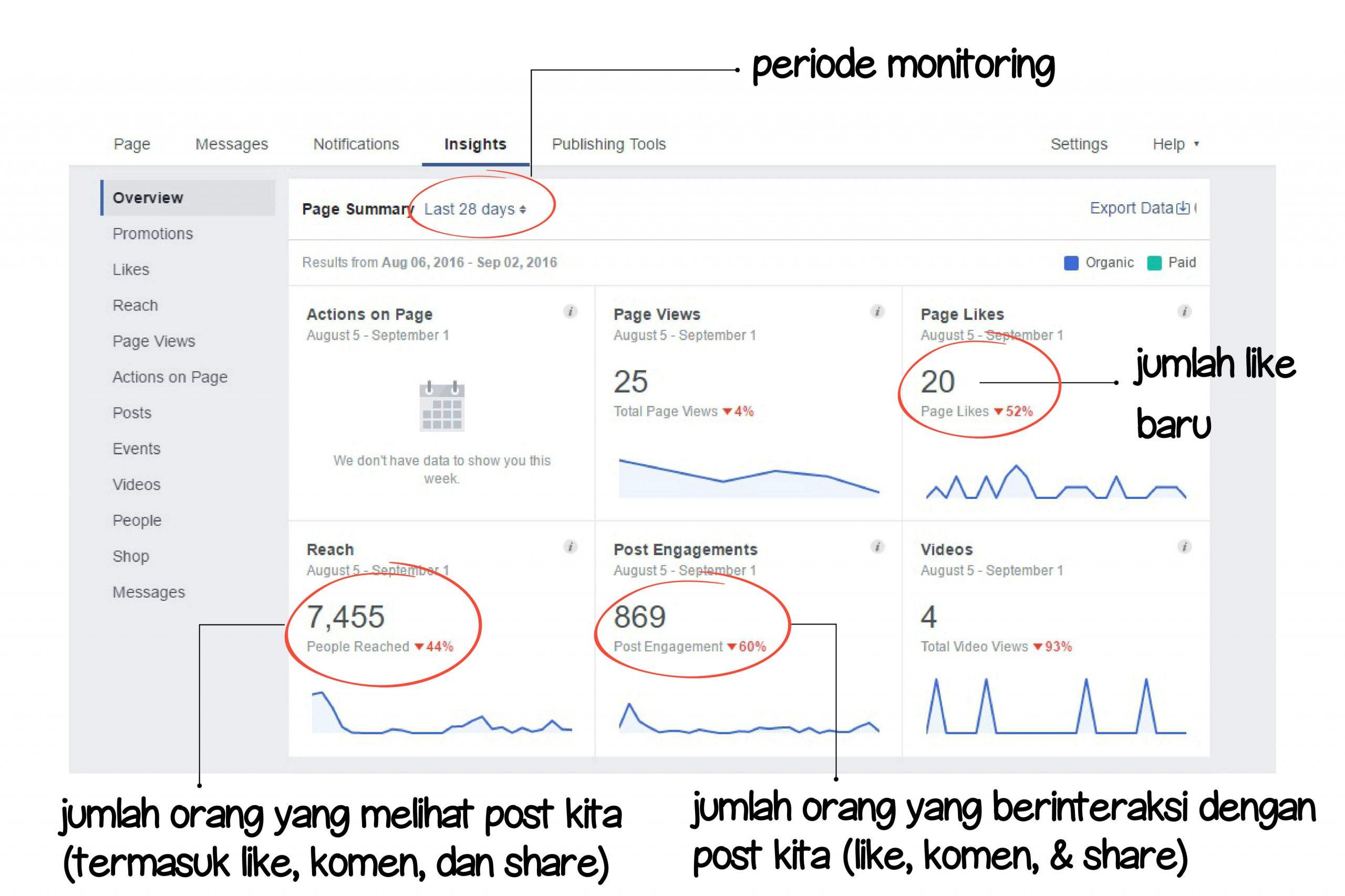 MONITORING-FB-INSIGHT
