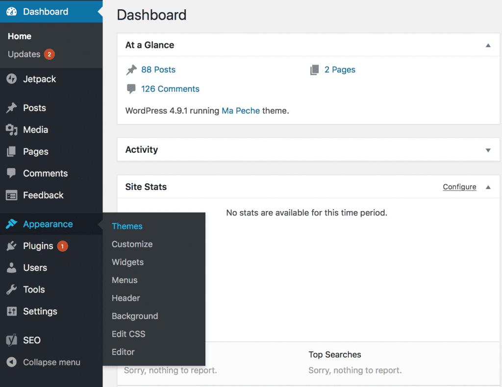 WordPress Theme Appearance Dewaweb