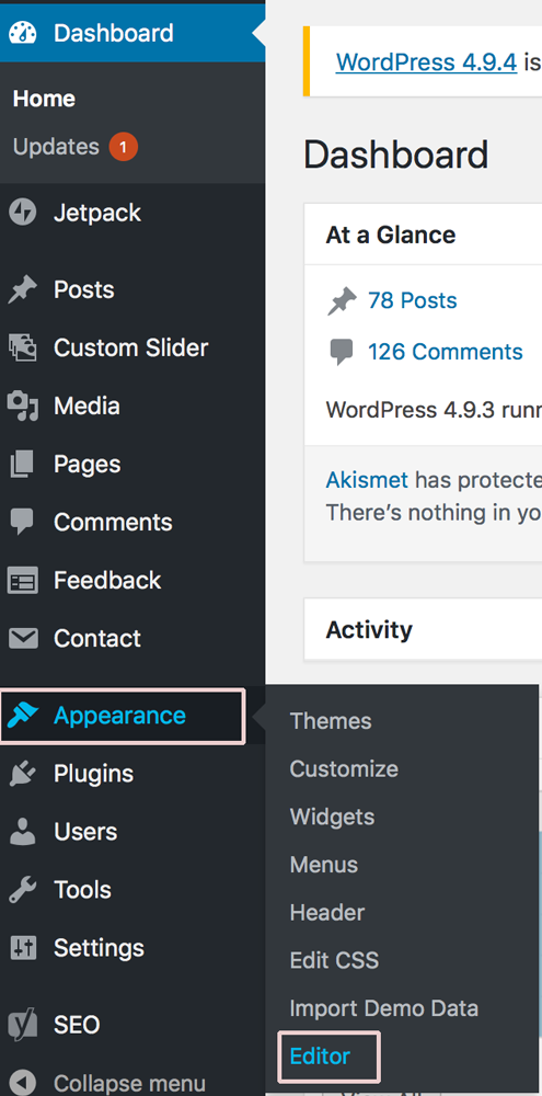 WordPress-Editor-Appearance