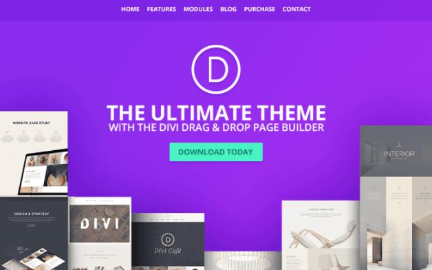 elementor pro, elegant themes, dan lapakinstan gratis divi theme