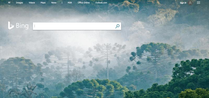 Bing Search Engine Mesin Pencari Dewaweb