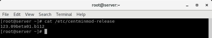 root@server4