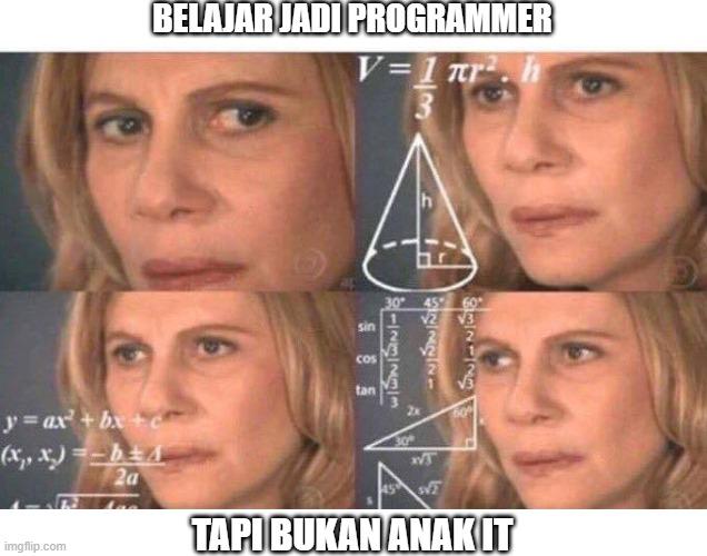 meme programmer